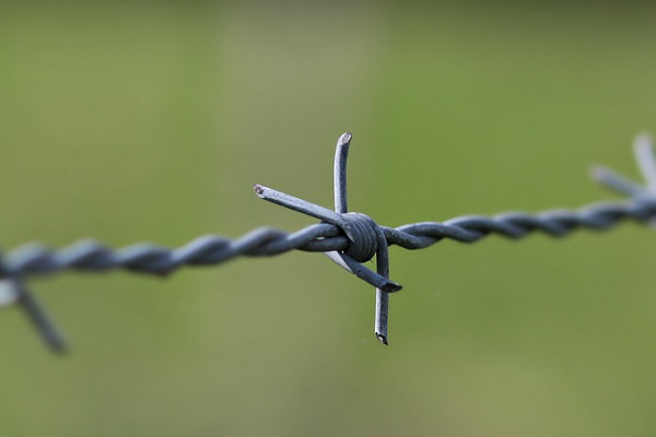 В Смоленске ссора из-за девушки стала причиной ложного доноса в полицию