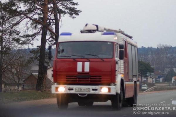 В Смоленске подгоревший обед спровоцировал экстренный выезд спасателей